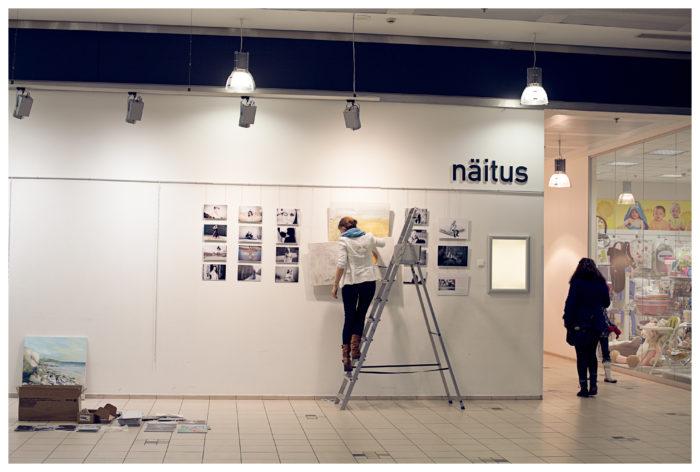 Näitus Tartu Kaubamajas 2014